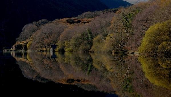 Llyn Dinas by wynn469