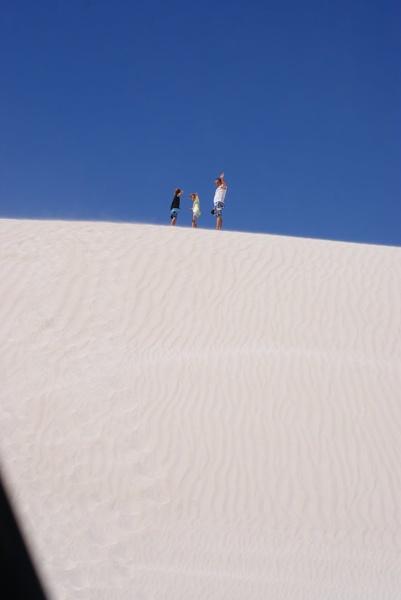 In the Dunes by deedownunder