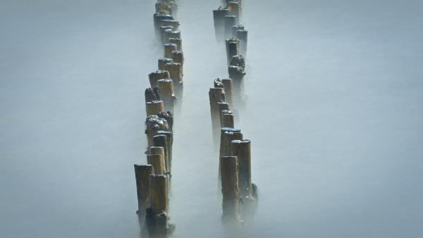Mersea Island by ninetofortytwo