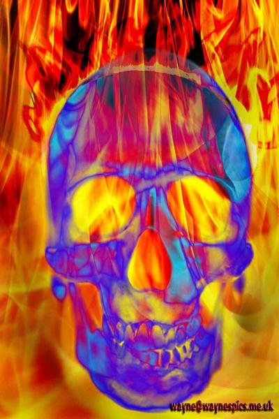 Flamin Skull by Wayniac