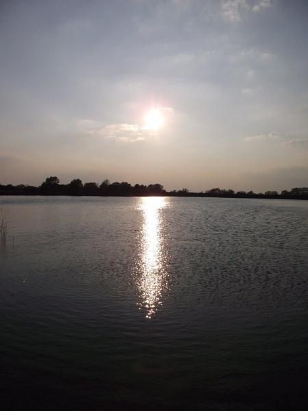 sun by miaallaker