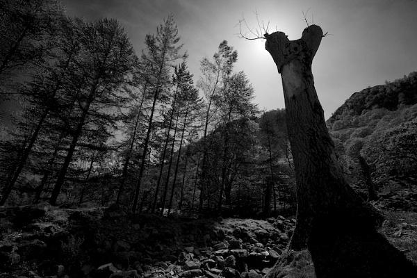 Deep In Borrowdale by HowieR