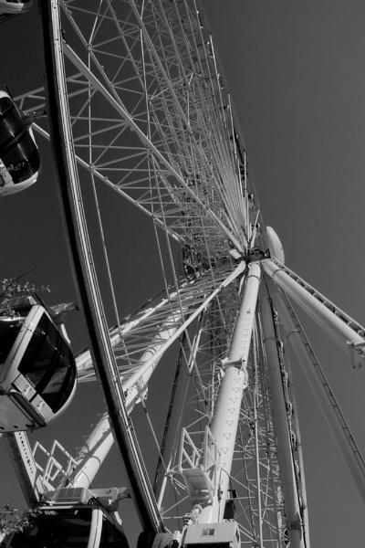 The  Wheel by Stebinners