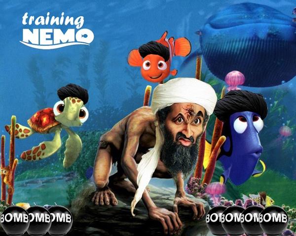 Training Nemo by MarkBowker