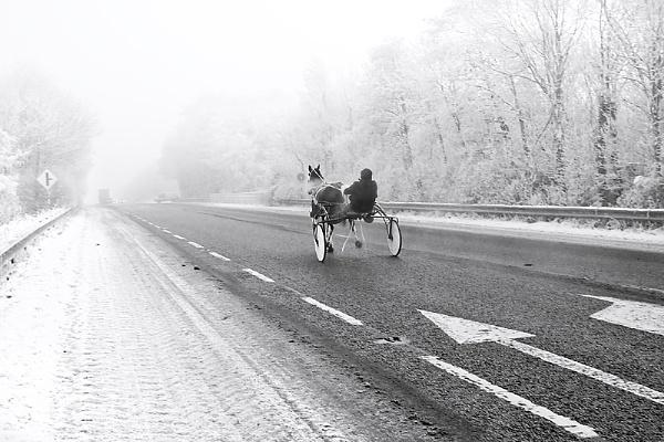 Easy Rider by JOHNu