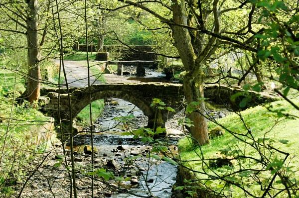 Bridges. by HollySercombe