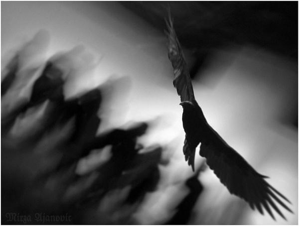 Das Jenseits by Ajanovic