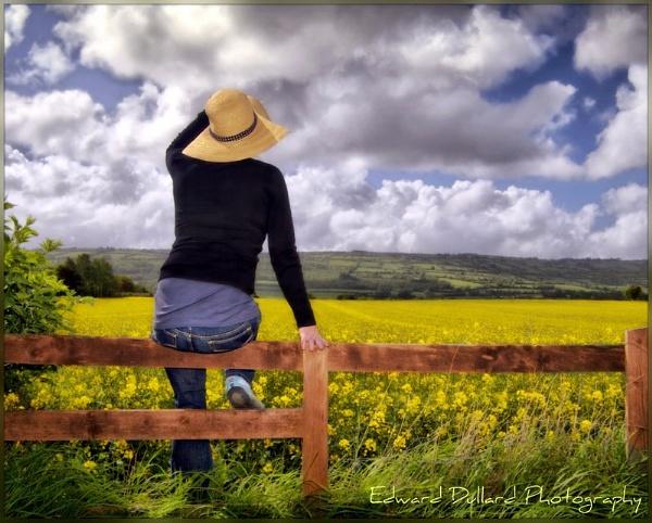 I WAS RAISED ON COUNTRY SUNSHINE. by EDWARDDULLARD