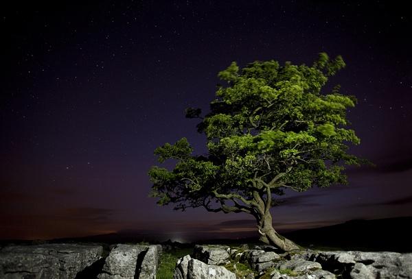 Midnight Starlight by Phil32