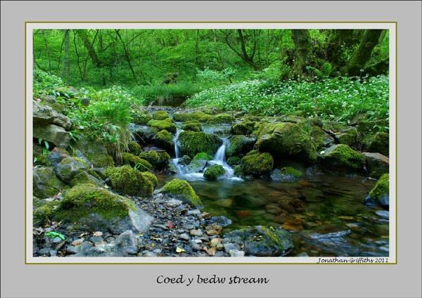 Coed y Bedw stream by Lightthouseman