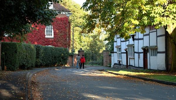 autumn walk by ceejay63