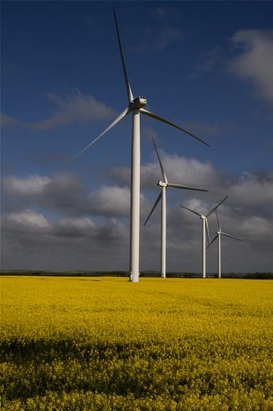 Wind farm by wharmby