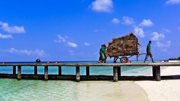 Maldivian Thatch by mymindseye