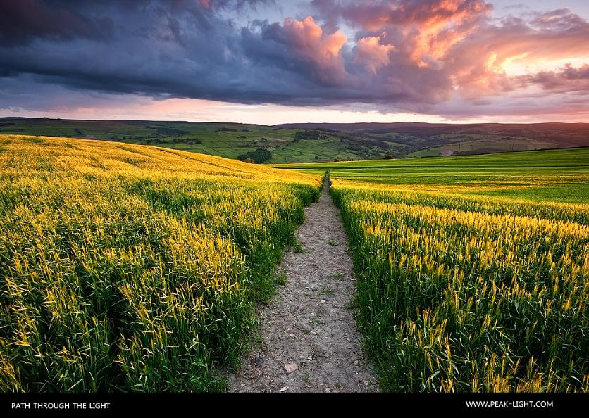Path Through the Light