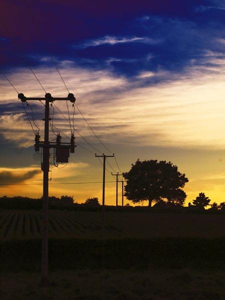ElectriciTree by Alandyv8