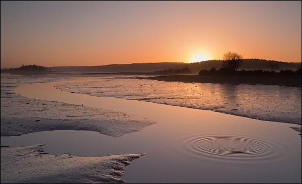 Brown Island Sunrise by carrigman