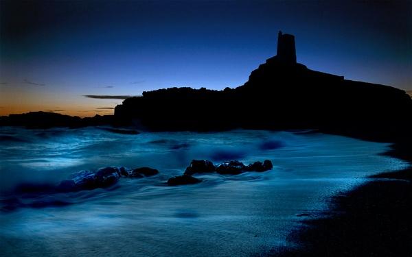 Llandwyn Silhouette by Bee76