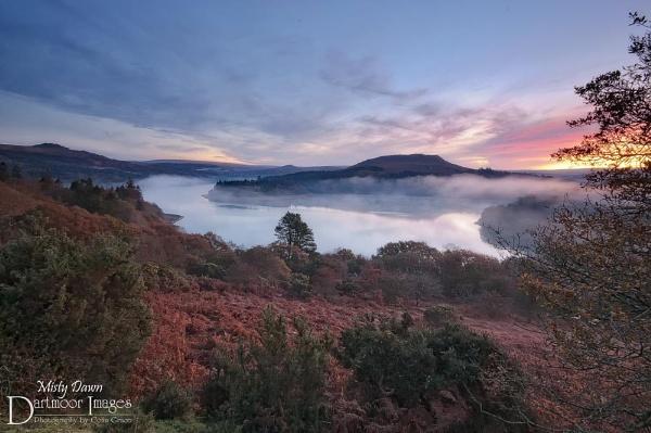 Misty Dawn by GraceC