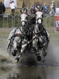 Horse races 2