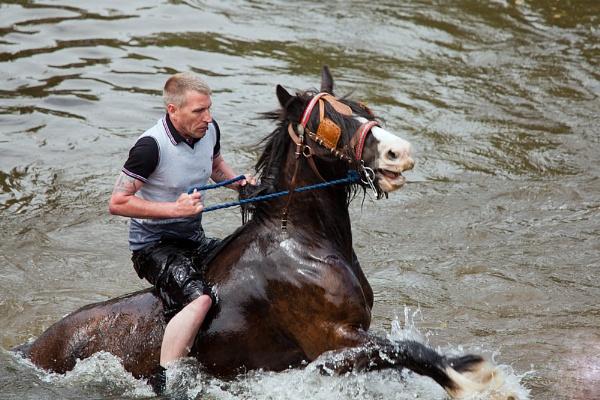 Appleby Horse Fair by williamthorpe271
