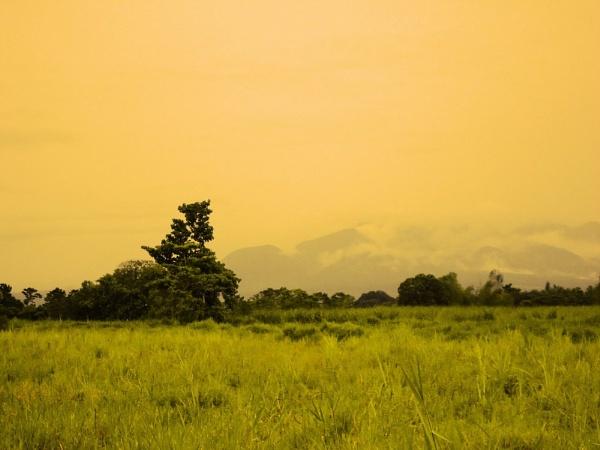 A Beautiful Landscape by lobski