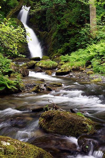 Dolgoch Falls by saxon_image
