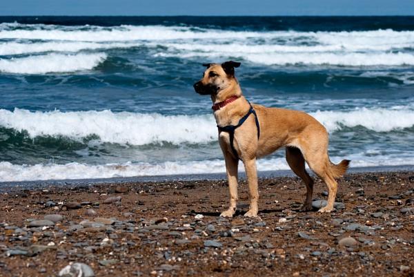 Kim On The Beach by YoBellzaa