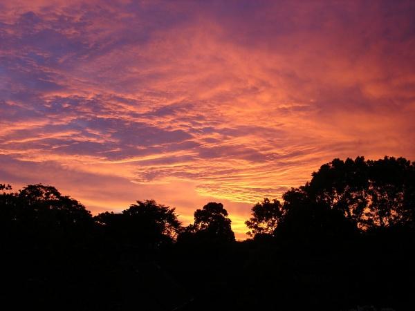 Dawn by Edmo117