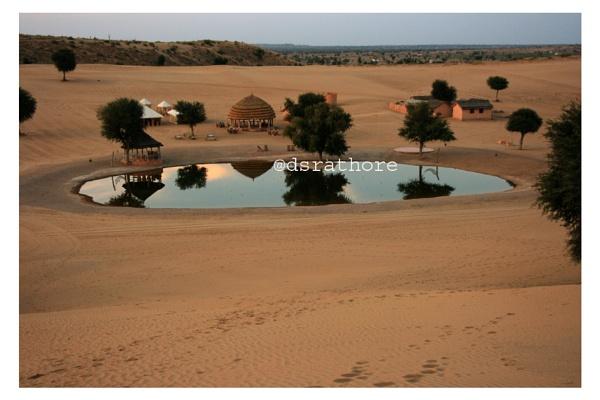 Oasis in Desert by dsrathore999