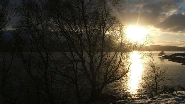 Morning Sun by emacklyn