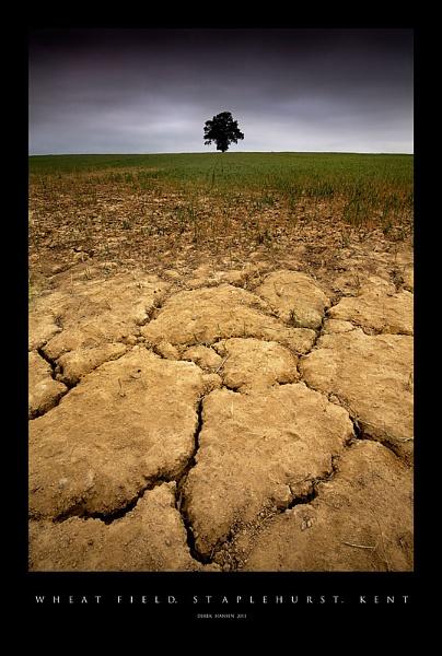 Droughts end ? by derekhansen