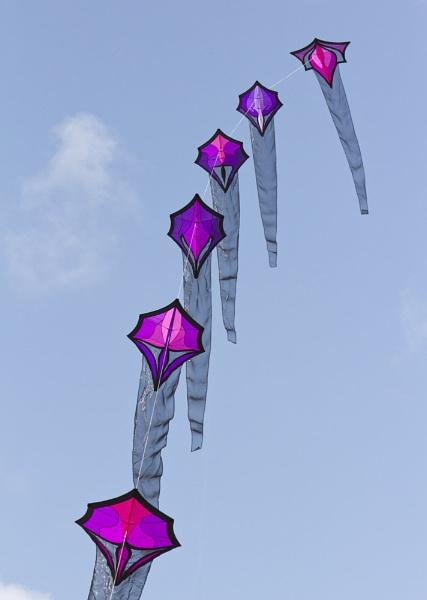 Kites by RonW1123
