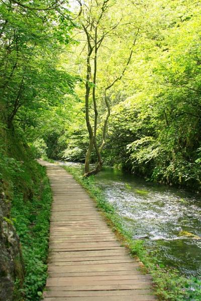 pathway by jimbob5643