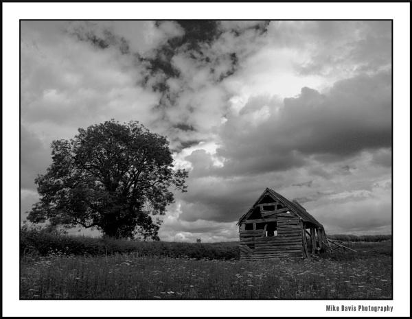 The Barn by Alandyv8