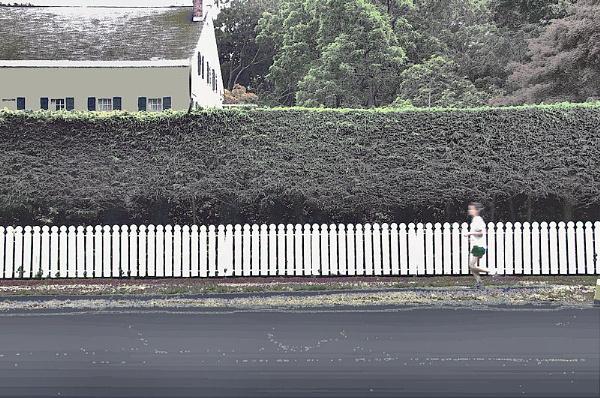 Runner along the Hedge by DonSchaeffer