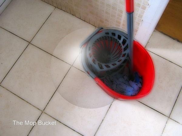 The Mop Bucket by joseph