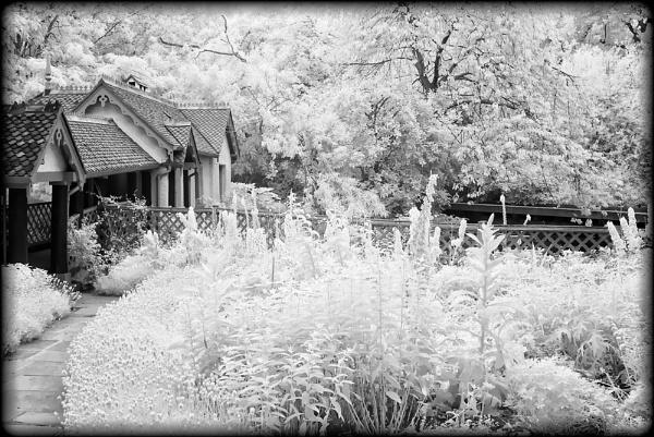 Duck Island Cottage by dwilkin