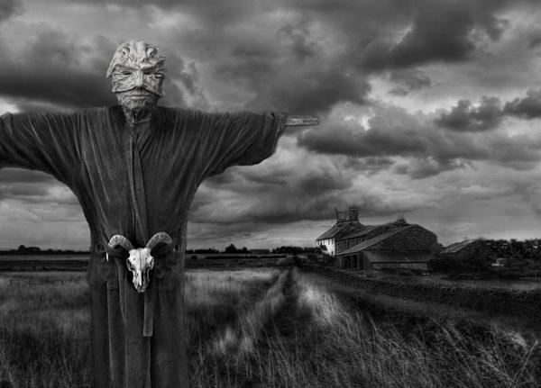 The Scarecrow by whiteboxer