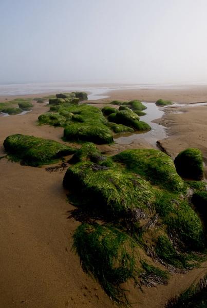 North Sea Mist by PRE99