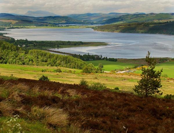 Dornoch Firth by gingerdelight