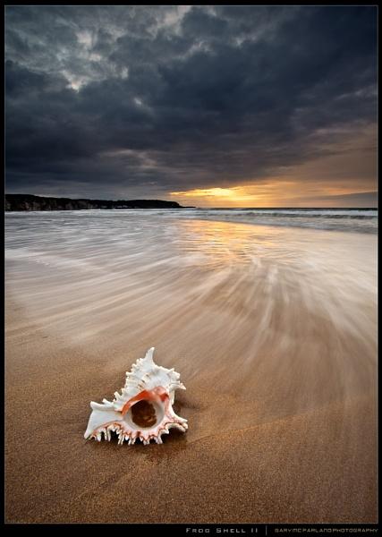 Shell by garymcparland