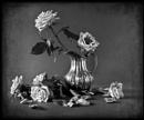 Jugged Roses
