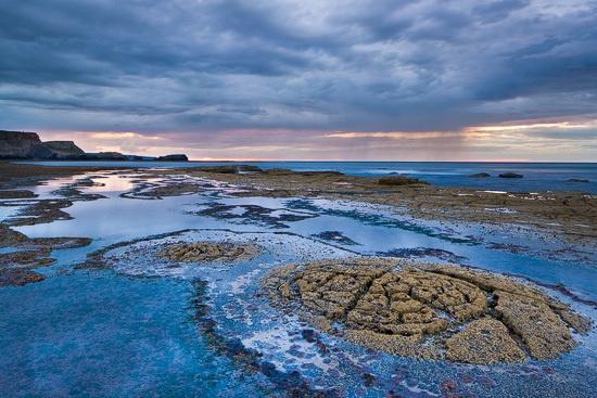 Rocky seabed, Saltwick by Lizzie_Shepherd