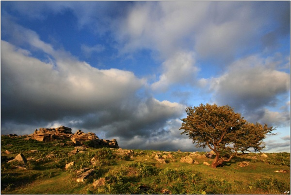 Late Evening  At  Pew Tor , Dartmoor, by MikeGreaves
