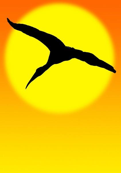 American wood stork silhouette by zazzycat