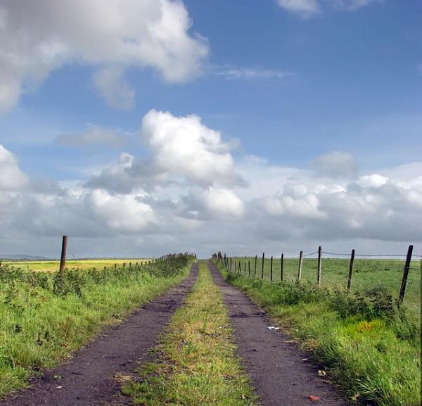 Off Heather Road II by Declanworld