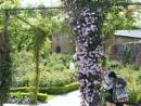 alnwick gardens northumberland