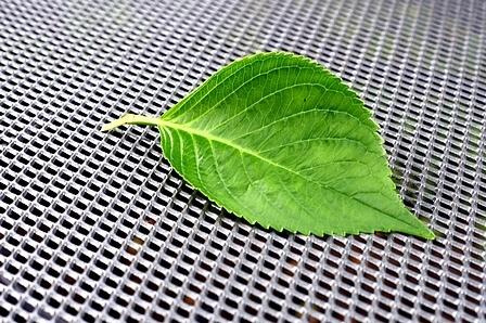 Leaf table by Meditator