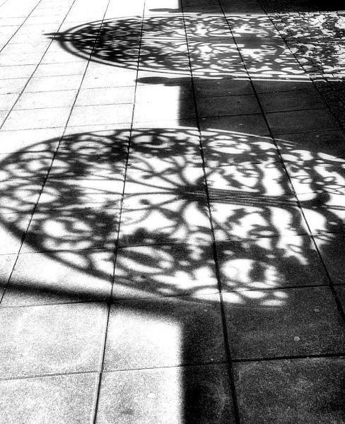 Shadows by joelgalleries