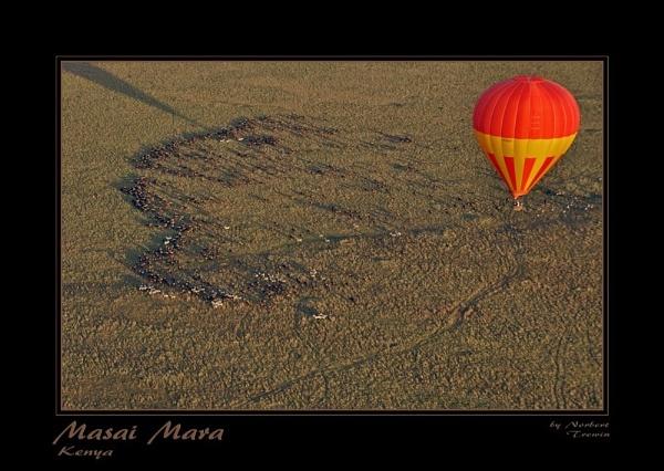 Masai Mara by Merbert